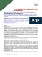 memory impairment elderly
