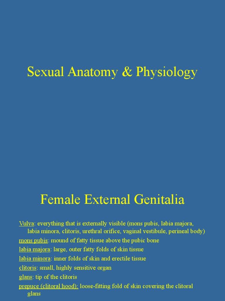 Sexual A&P | Vagina | Clitoris