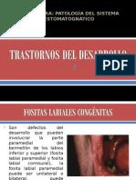 Clase Anomalias Desarrollo Estructuras Bucales y Dentarias