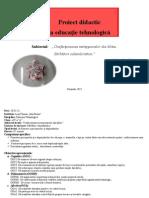 Proiect La Educatia Tehnologica