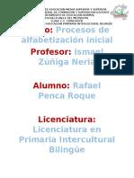 Teoría Psicogenetica.docx