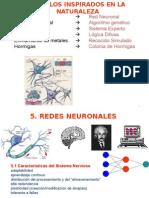 c5 Redes Neuronales(1)