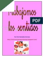 Los Sentidos español