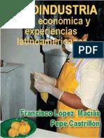 La Agroindustria Teoria Economica