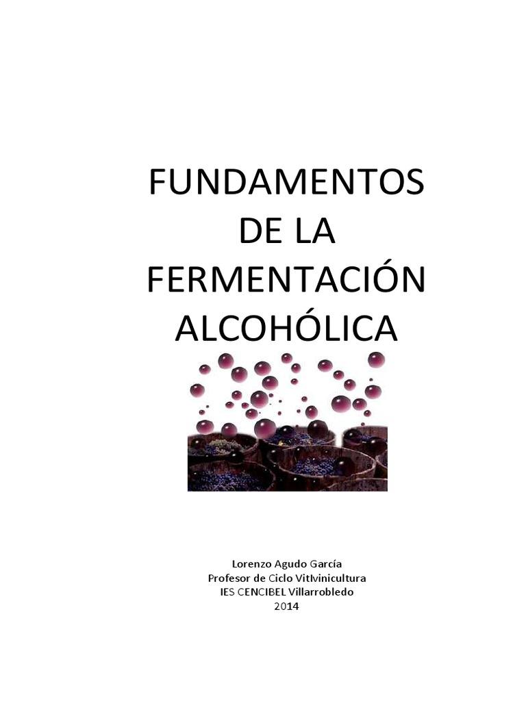 Fundamentosdelafermentacinalcohlica 141007141158