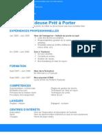 Example CV Classique Bleu