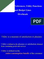 Consumer Util Budget