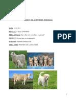 0_plan_inspectie animale domestice.doc