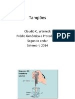 Tampao2014d.pdf