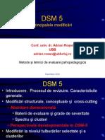 Principalele modificari DSM 5  metode.ppt