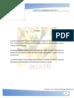 Proyecto Empanadas Final Nuevo 1 Docx