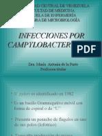 Clase de Helicobacter y Campylobacter Para Estudiantes