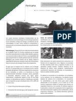U3 Procesos Ecológicos