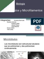 Microtúbulos y Microfilamentos.pptx
