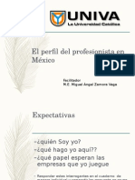 PERFIL PROFESIONISTA EN MÉXICO.ppt