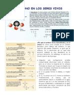 Agua-Sales.pdf
