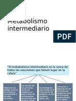 Glicólisis y gluconeogenesis