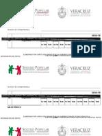 Formato Causes 2014
