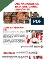 Programa Nacional de Asistencia Solidaria, Pensión 65