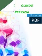 Company Profil PT.kolindo Perkasa Rev3