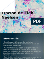 Tinción de Ziehl-Neelsen