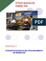 Conceptos Basicos Sobre Pm (1)