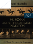 Edweard.Muybridge_AnimalsinMotion.pdf