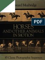 Edweard.Muybridge_AnimalsinMotion.pdf