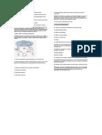 Bioquimicadelnitrogeno