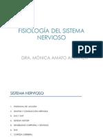 7. Fisiologia Sistema Nervioso