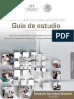 Guia_EXAIN-ESP