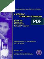 AAPI Interim Report.pdf