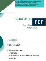 epitelio diapositiva