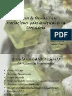 Aguad, Heidi - Procesos de Formación y Asociaciones Paragenéticas de La Grosularia