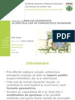 Rolul Formelor Geometrice Și Efectele Lor În Compozițiile Peisagere DODU DIANA