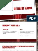 Definisi Hamil