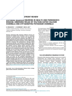 NEUROSCIENCE FOREFRONT REVIEW DOPAMINE MIDBRAIN NEURONS IN HEALTH AND PARKINSON'S DISEASE
