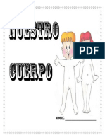 Fichas Cuerpo Humano