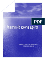 Anatomia Do Abdomem Superior