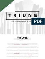 TRIUNE ProcessBook