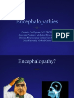 Encephalopathies.pdf