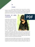 Cópia de Psicologia Canina