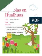 Apícolas en Hualhuas