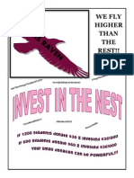 rrms invest in the nest flyer 2015