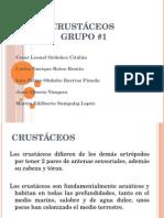 Diapositivas Crustáceos