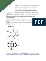 La Teofilina Es Un Broncodilatador