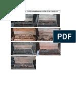 Fotos Portal de Salida