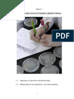 protocolo 1 - segurança e inoculação de meios