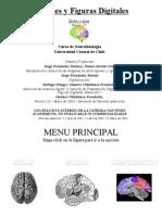 Atlas Anatomico