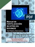 Fertilización In Vitro en Bovinos